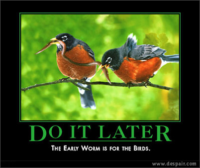 Do It Later Demotivators Poster