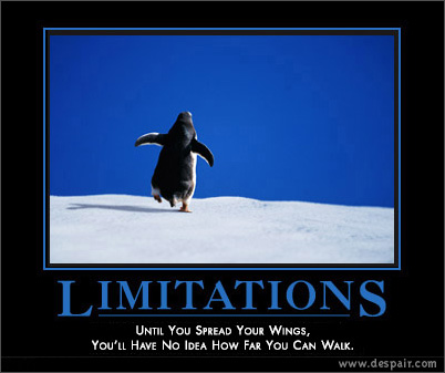 Limitations Demotivators Poster