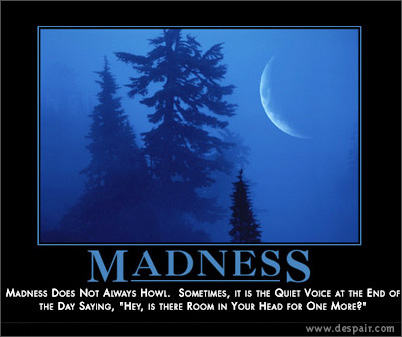 Madness Demotivators Poster