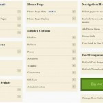 WordPress Thesis Theme Customization Part One: Options
