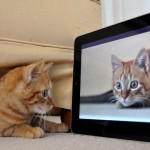 Is the iPad Good for Blogging?