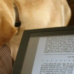 Great Reminders for Writing Your First eBook