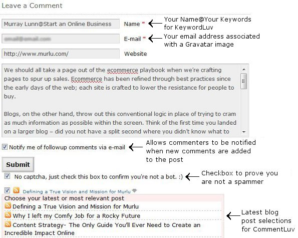 WordPress Comment Plugins on the Comment Form