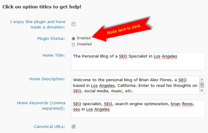 All-in-One SEO WordPress Plugin - Enabling
