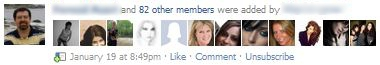 Added Members to Facebook Group