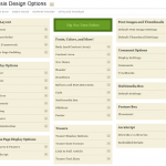 Thesis Framework Design Options Admin Panel