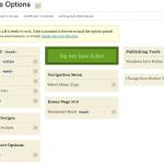 Thesis Framework SEO Settings Site Options