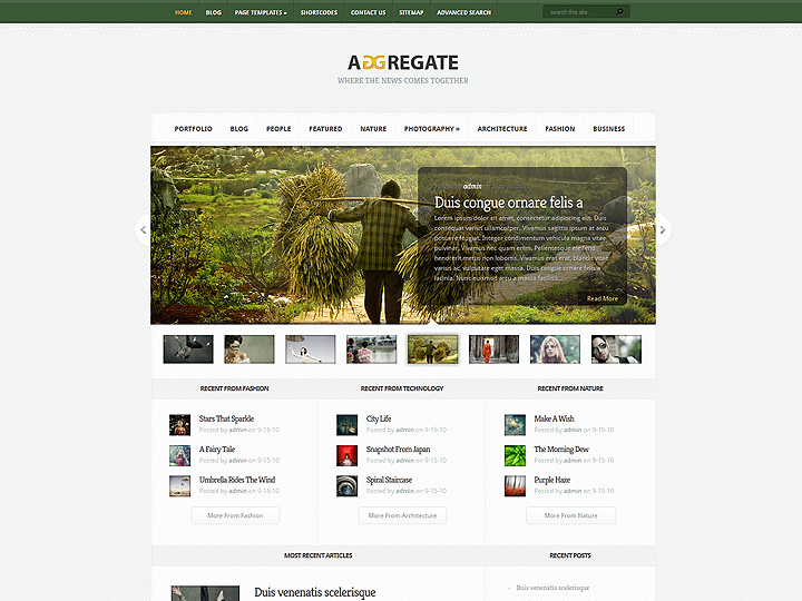elegantthemes-review-aggregate-theme-preview