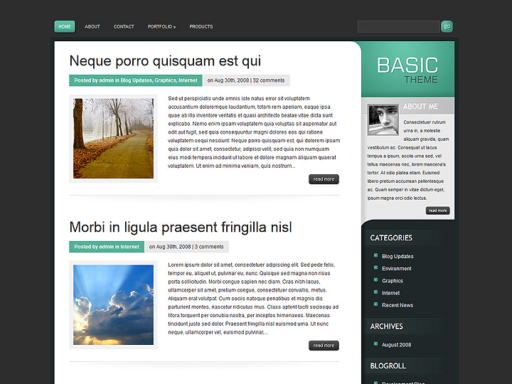 elegantthemes-review-basic-theme-preview