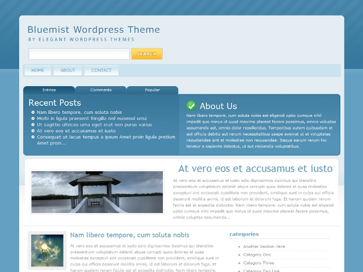 elegantthemes-review-bluemist-theme-preview