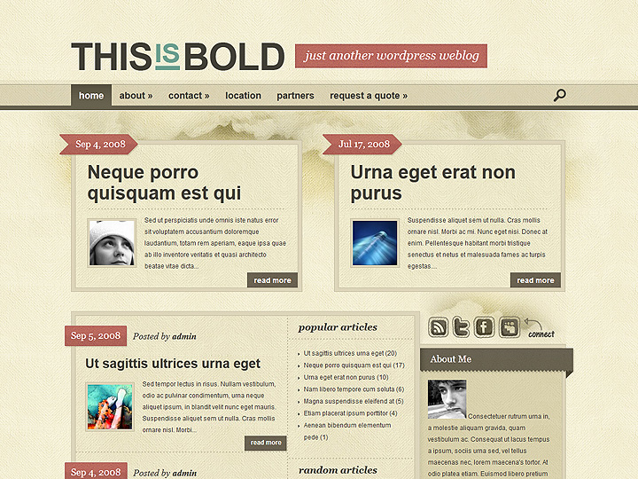 elegantthemes-review-bold-theme-preview