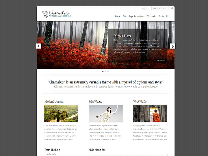 elegantthemes-review-chameleon-theme-preview