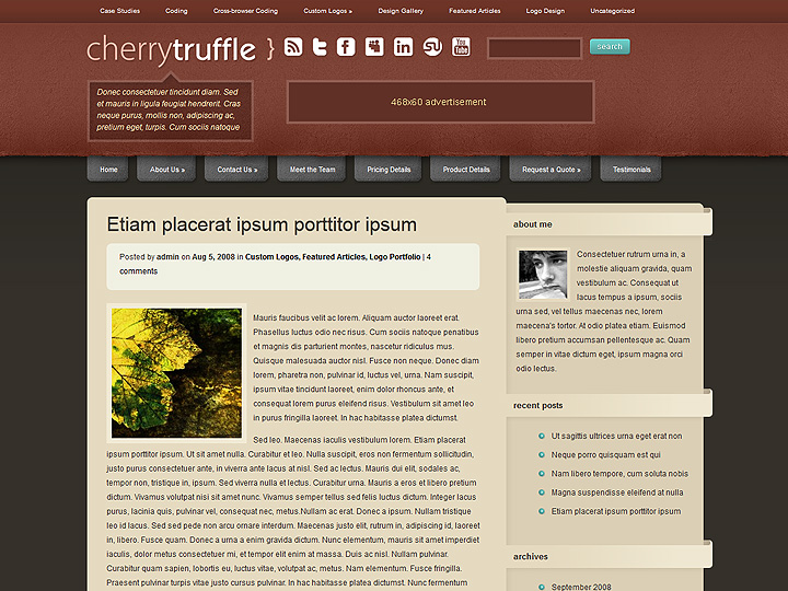 elegantthemes-review-cherry-truffle-theme-preview