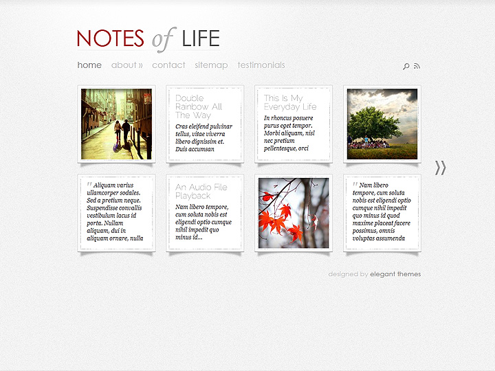 elegantthemes-review-daily-notes-theme-preview