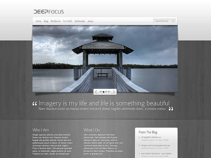elegantthemes-review-deep-focus-theme-preview