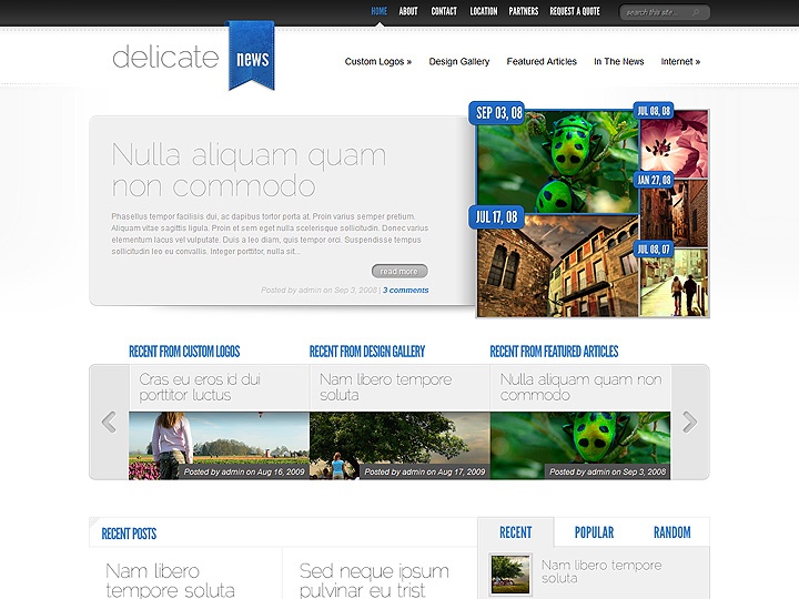 elegantthemes-review-delicate-news-theme-preview