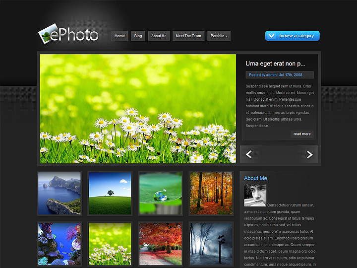 elegantthemes-review-ephoto-theme-preview