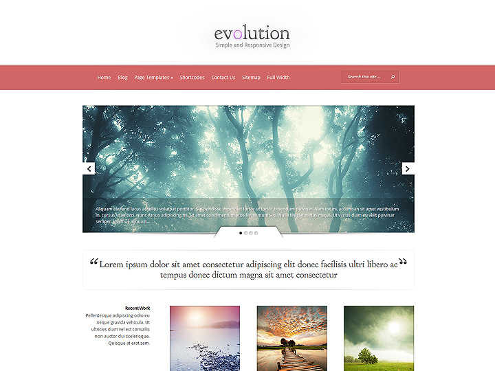 elegantthemes-review-evolution-theme-preview