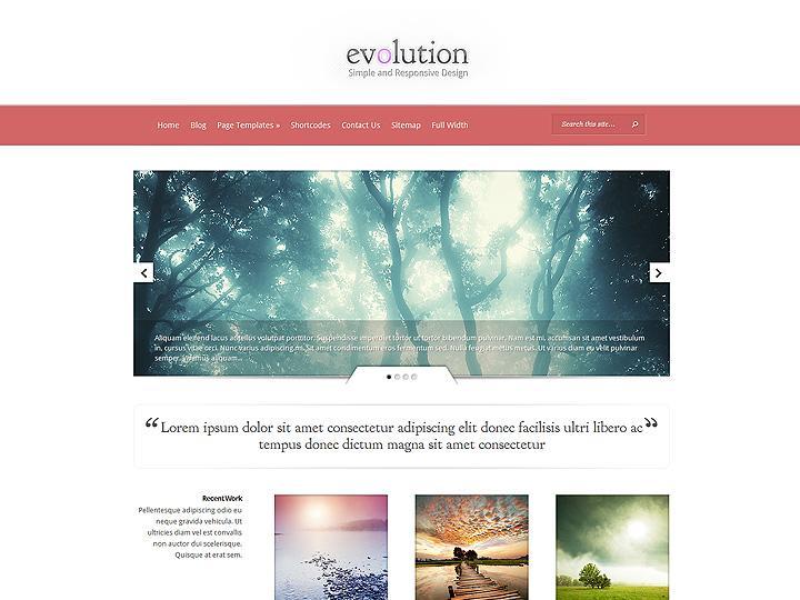 elegantthemes-review-evolution-theme-preview