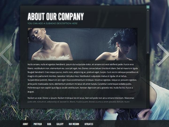elegantthemes-review-gleam-theme-preview