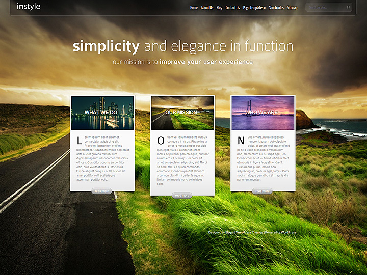 elegantthemes-review-instyle-theme-preview
