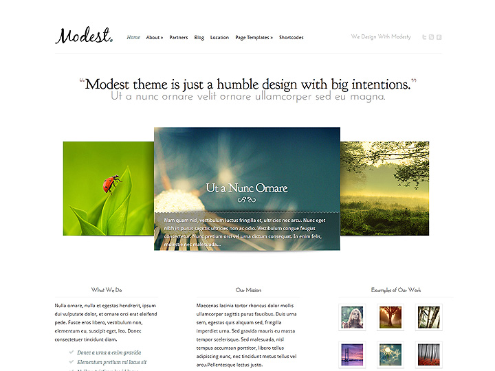 elegantthemes-review-modest-theme-preview