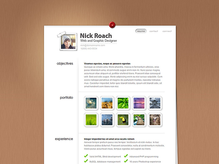 elegantthemes-review-my-resume-theme-preview