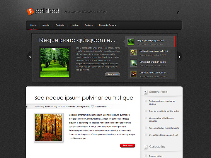elegantthemes-review-polished-theme-preview