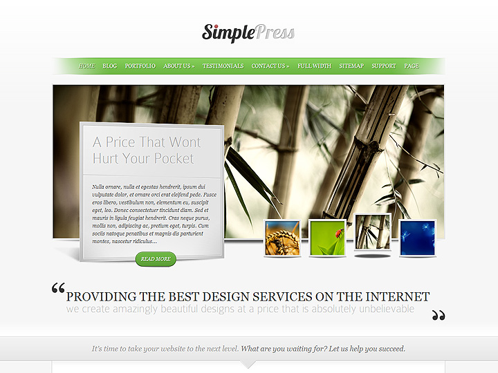 elegantthemes-review-simplepress-theme-preview