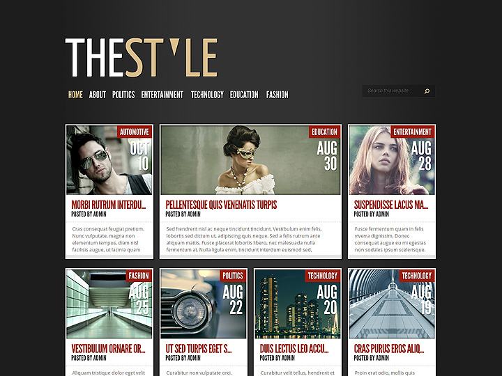 elegantthemes-review-thestyle-theme-preview