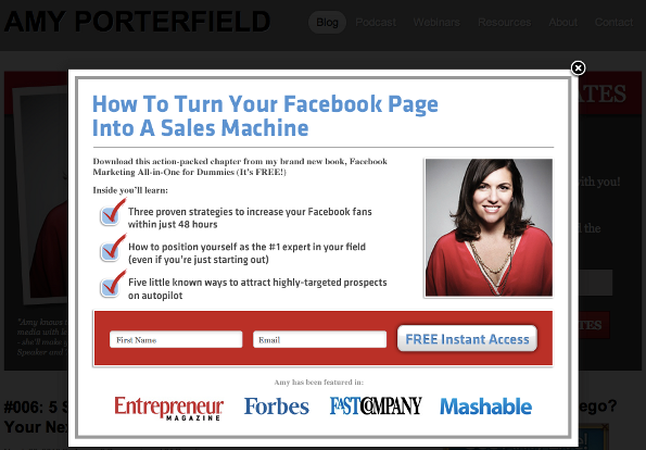 popup-opt-in-form-amy-porterfield
