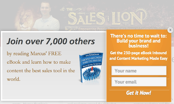 popup-opt-in-form-saleslion