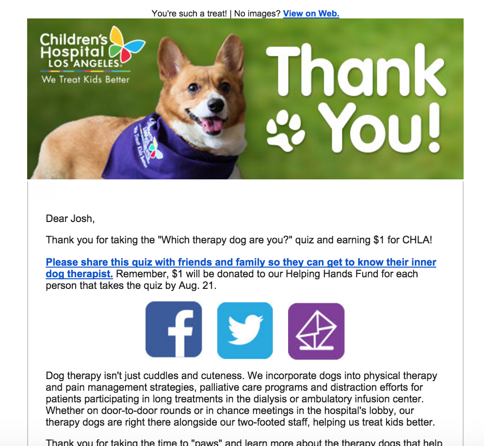 opt-in thank you email