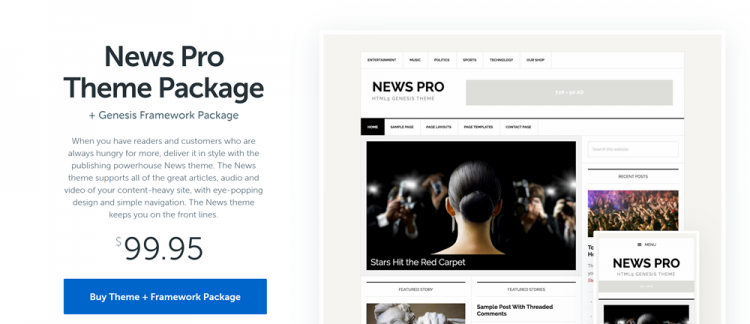 Best WordPress Blog Themes: News Pro